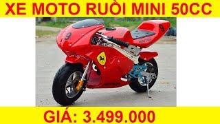 Xe moto ruồi mini 50cc xăng pha nhớt giá rẻ 3.499.000đ
