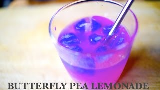 butterfly pea flower tea lemonade - healthy vegan drink