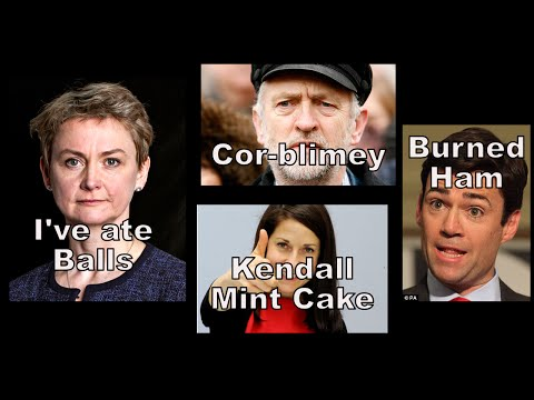 Labour Leader - Who should I vote for? - Hayden Rants