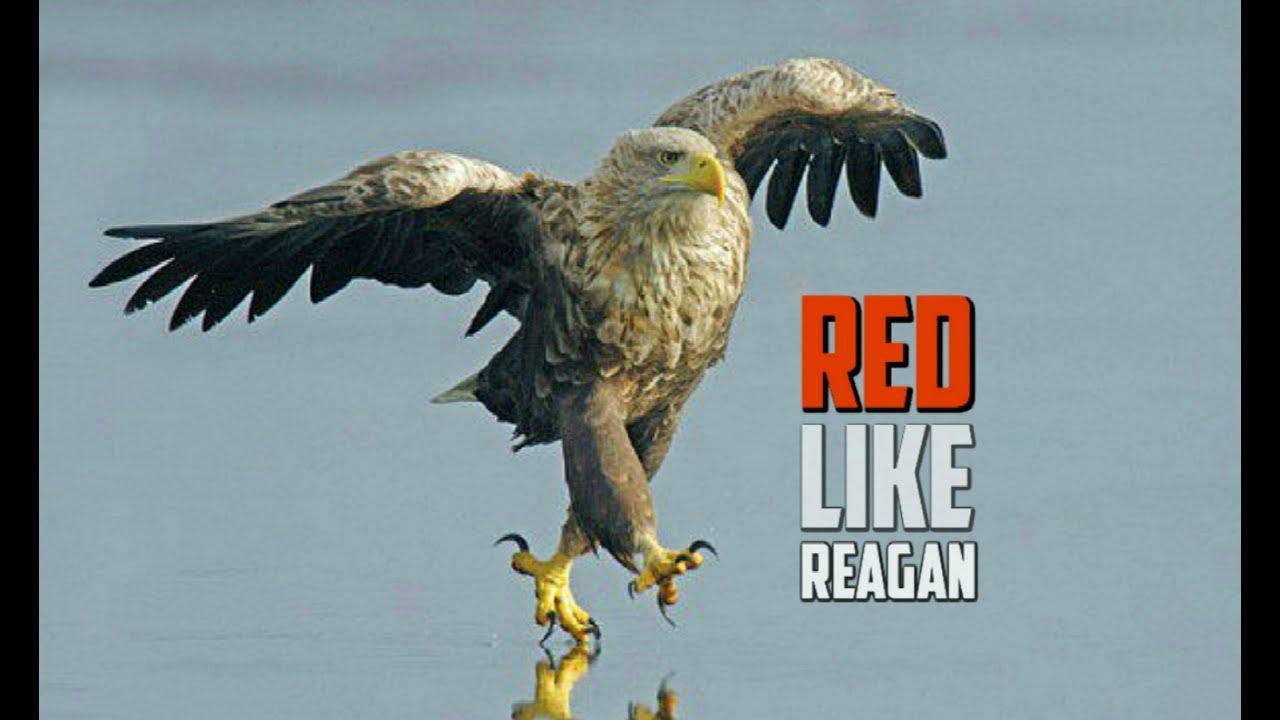 Buddy Brown - Red Like Reagan - FOLLOW Spotify & Apple