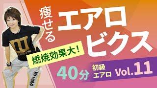 【エアロビクス】初級エアロ Vol 11/田口優喜/ホームフィットネス24