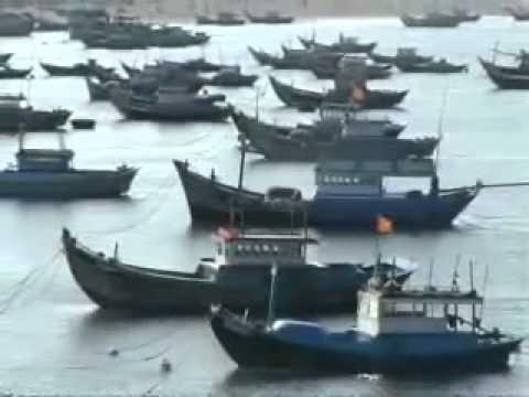 Nghề biển trên Đảo Phú Quý-donghuongphuquy.com
