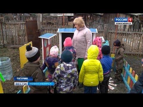 Обучение будущих специалистов-аграриев в Тогучинском районе начинают с детского сада