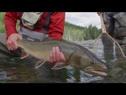 Scientific Anglers/Fly Fusion TV Web Series - Episode 2