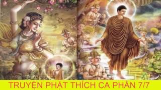 Bạn Có Duyên Với Đức Phật Khi Nghe Kể Chuyện Đêm Khuya Phật Thích Ca Mau Ni Truyện Phật giáo P7