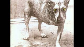 Alice In Chains Alice In Chains Full Album