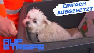 Tragische Entdeckung: Hund in Mülltonne gefunden | Auf Streife | SAT.1 TV