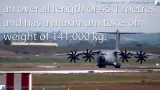 Aircraft Anatomy | Learn English | Vocabulary