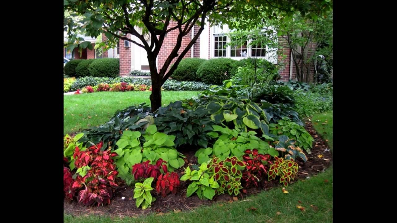 Easy Backyard Landscaping cheap and easy backyard landscaping ideas - youtube