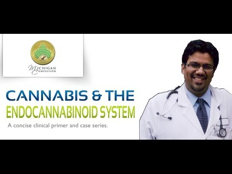 cannabis-and-the-endocannabinoid-system---part-2