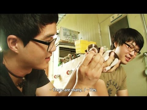 Screening Humanity | 인간극장 - Inventor Wansu's Life Diary, part 5 (2014.04.18)