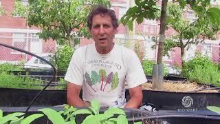 Michael Ableman - Farmer, author, photographer | Bioneers