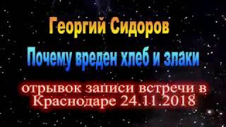 О вреде хлеба и злаков. Георгий Сидоров