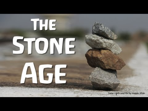 The Stone Age (World History)