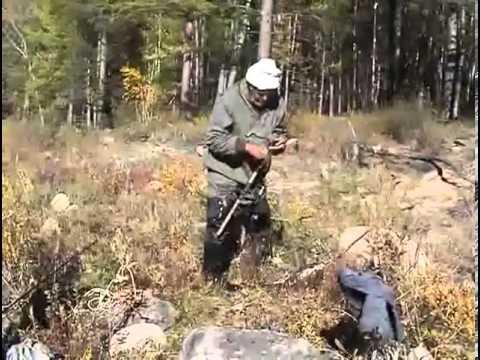Ловля ленка