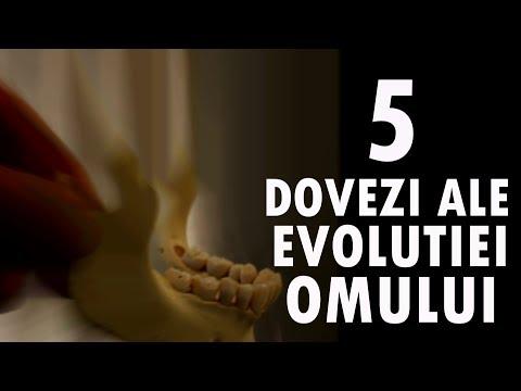 Top 5 Dovezi Ale EVOLUȚIEI Omului