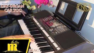 Học Đàn Organ Cấp Tốc TPHCM - Câu Vọng Cổ - Miền Tây Quê Tôi - S970
