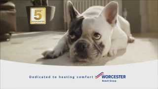 Worcester's latest TV commercial Thumbnail