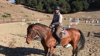 Horseriding Lessons in Carmel