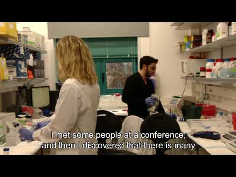 A Direct PhD Program In Neuroscience And Brain Sciences At The Weizmann Institute Of Science