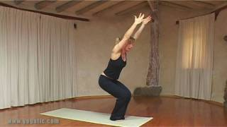 Ashtanga Yoga, Sun Salutation - B