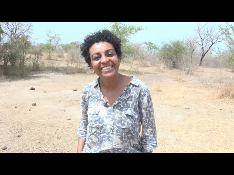 Adjoa Andoh in Ghana