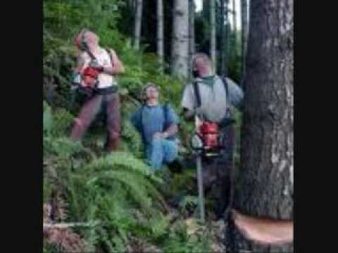 lumberjack jackyl