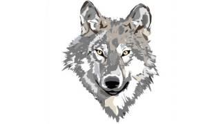 Evolution of a Lament.  Part 4 - Taming the Wolves