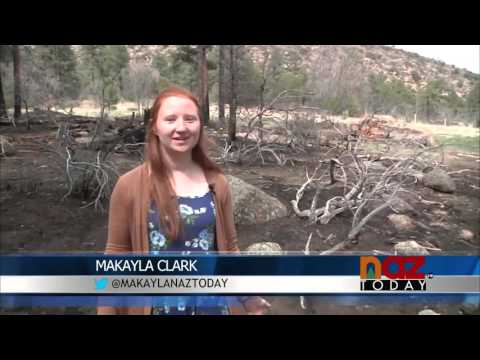 Flagstaff Fire Department Fights Multiple Wild Fires
