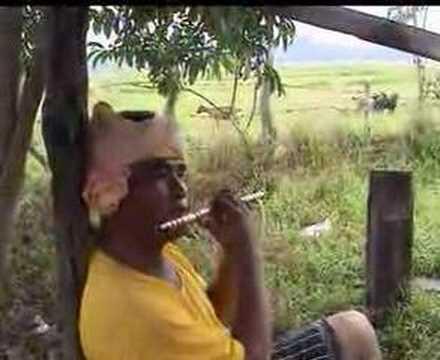 Hamid Budaya- Gembala kambing