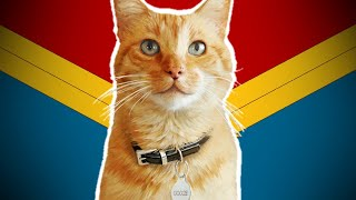 Goose The Cat's Comic Book Origins (Chewie)   Captain Marvel