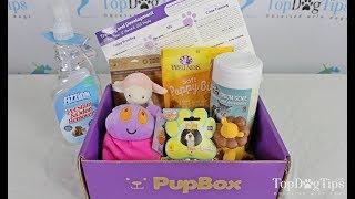 PupBox Puppy Subscription Box Review (2018) thumbnail
