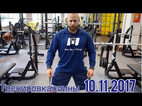 Тренировка спины (AlexFitness 10.11.2017)
