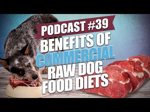 Top Commercial Raw Dog Food