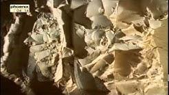 Hatschepsut - Reportage über Hatschepsut - Die Frau auf dem Pharaonenthron