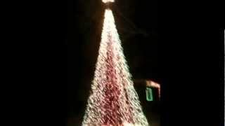 Led Light Show Cone Christmas Tree Are A Great Way To Light Up The Holidays