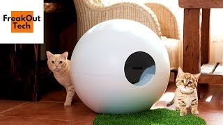 5 Incredible Cat Gadgets You Never Knew About