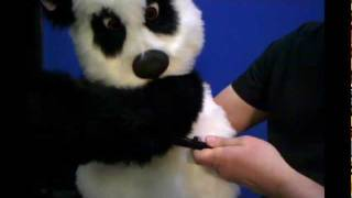 Panda Puppet with Blinkers...from Axtell Expressions