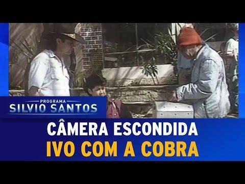 Câmera Escondida - Ivo com a Cobra