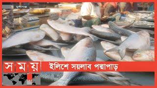 সারি সারি ইলিশে ভরে গেছে আড়তগুলো | Ilish Fish | Somoy TV