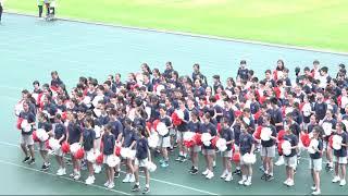 Publication Date: 2019-12-05   Video Title: 香港培正中學 - 第七十三屆陸運會 - 中一安社啦啦隊 Mu