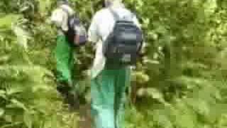 VIDEO CAMINATA RIO MEDELLIN INDER CAMINANTES BOLIVARIANOS