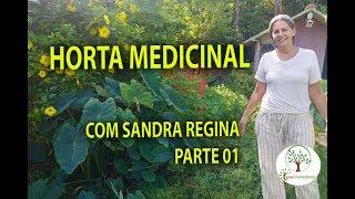 01 Horta Medicinal em Casa com Sandra Regina para sua Saúde