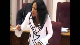 sirko den parlamento di Aruba