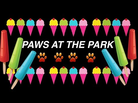 PAWS AT THE PARK DOG PUPPY ICE-CREAM MASSAGE FUN- DIY Dog Food by Cooking For Dogs