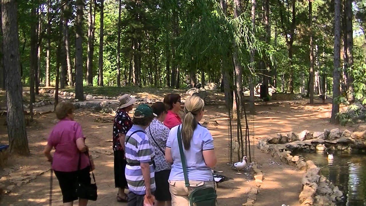Tour Of Motheru0027s Village And St Francis Garden Medjugorje