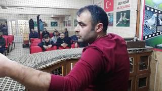 Gambar cover Bu Kadar Düzgün, Güvercin Derneği Görmedim - Dernek Başkanı Serkan Turan - 05364796428