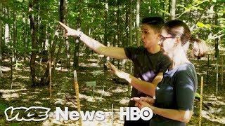 VICE News Tonight: Experimental Forest (Full Segment)