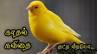 🌹💜 Love Quotes in Tamil Kathal Kavithai Tamil Whatsapp Video} #040🌹💜❤💕