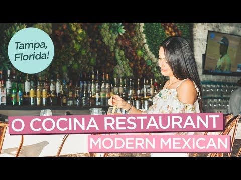 Delicious Dishes At O Cocina Modern Mexican Restaurant In Tampa Florida